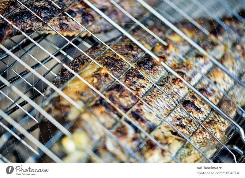 Gegrillte Dorade Lebensmittel Fisch Ernährung Mittagessen Abendessen Bioprodukte Diät Sommer Wärme Grill Rost genießen frisch Gesundheit lecker natürlich saftig