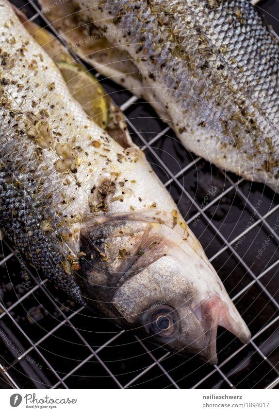 Frischer Wolfsbarsch zum Grillen Lebensmittel Fisch Kräuter & Gewürze Ernährung Mittagessen Bioprodukte Vegetarische Ernährung Meer einfach frisch Gesundheit