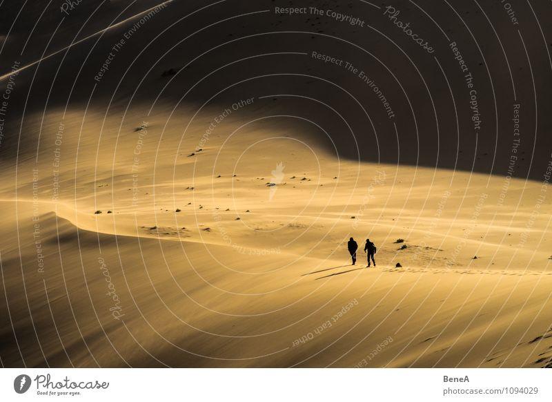 Dune exotisch Mensch 2 Natur Landschaft Sand Hügel Wüste Stranddüne Mongolei Asien gehen wandern außergewöhnlich Unendlichkeit wild Tapferkeit Neugier