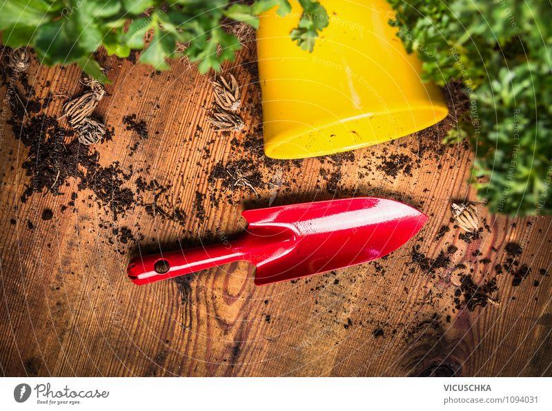 Rote Schaufel mit Blumentopf und Erde Lifestyle Stil Design Garten Innenarchitektur Dekoration & Verzierung Natur Pflanze Frühling Sommer Herbst Container