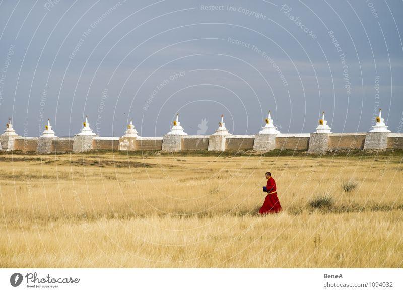 Monk ruhig Meditation Mönch Mensch maskulin Mann Erwachsene 1 Religion & Glaube Buddhismus Tempel Gras Park Wiese Kirche Mauer Wand Fußgänger Mönchskutte gehen