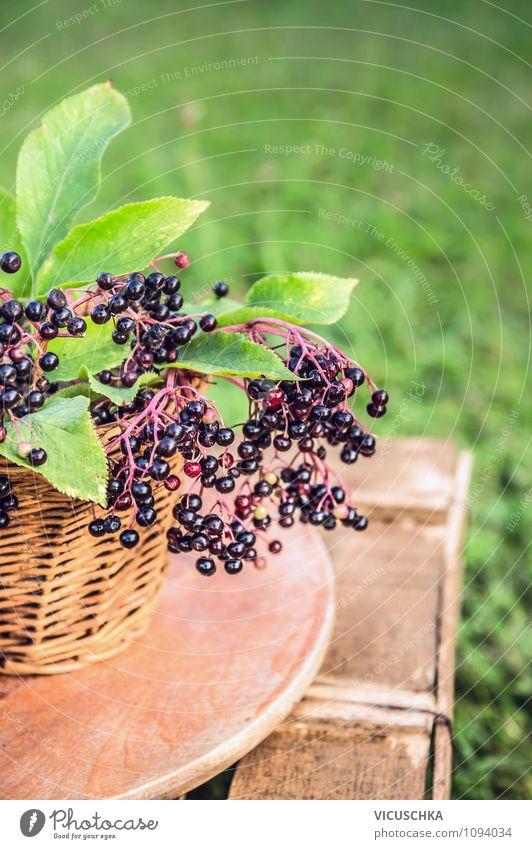 Holunderbeeren auf dem Gartentisch Natur Pflanze Sommer Blatt Gesunde Ernährung gelb Leben Gras Stil Lebensmittel Lifestyle Frucht Design Tisch Schönes Wetter
