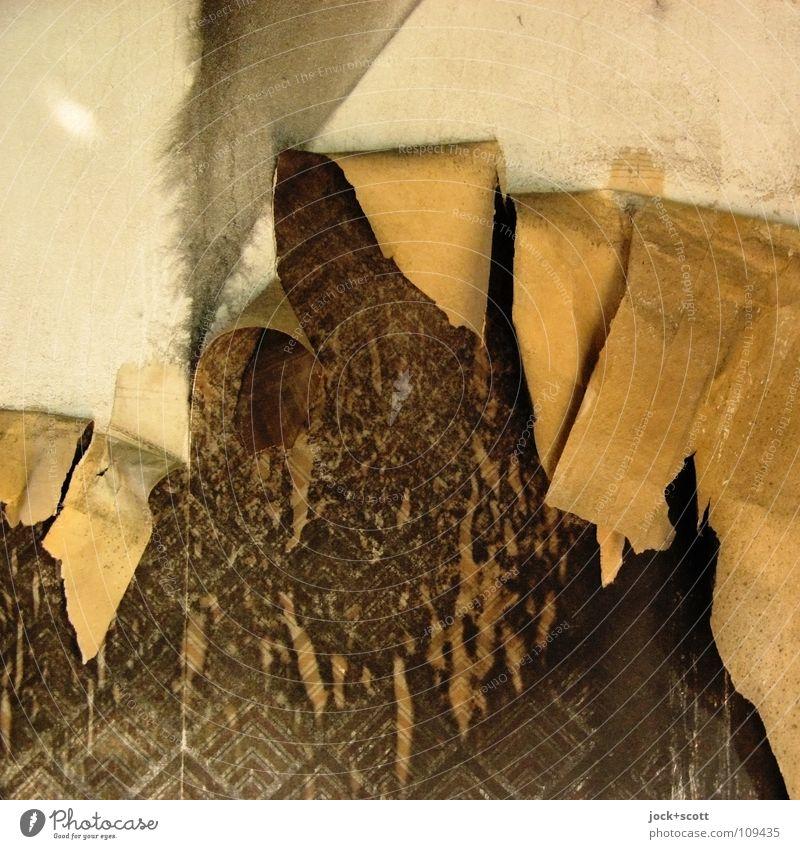 Musterfaser (Ablösung) Dekoration & Verzierung Tapete Büro Wand alt dreckig hässlich kaputt trashig braun Vergänglichkeit Zerstörung Rückseite Untergrund
