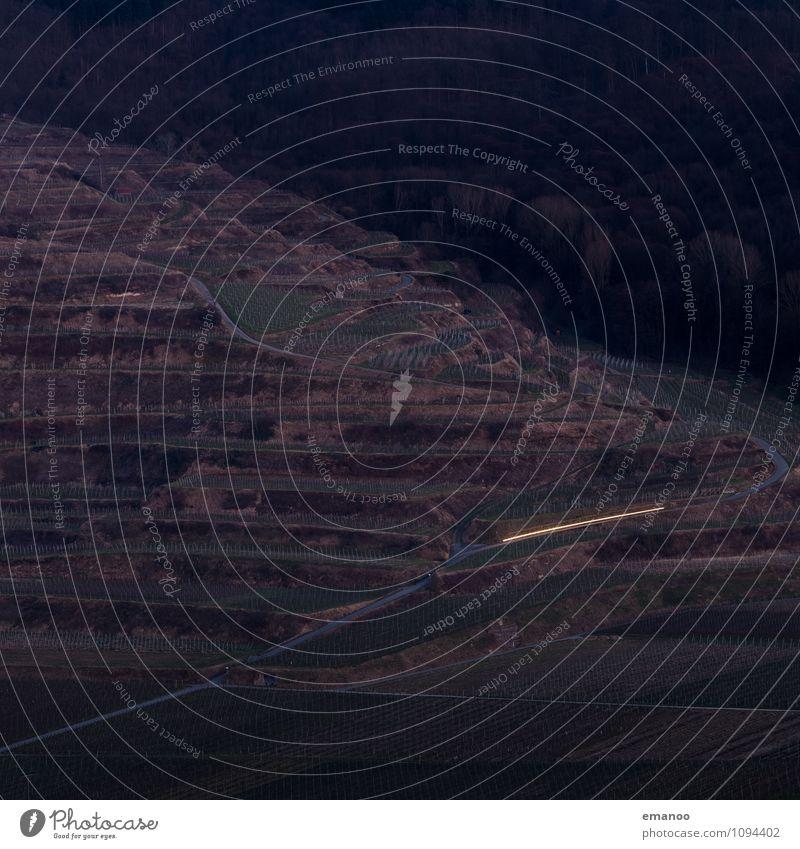 Kaiserstuhlabfahrt Natur Landschaft Pflanze Nutzpflanze Garten Hügel Berge u. Gebirge Verkehr Verkehrswege Straße Wege & Pfade Fahrzeug PKW dunkel