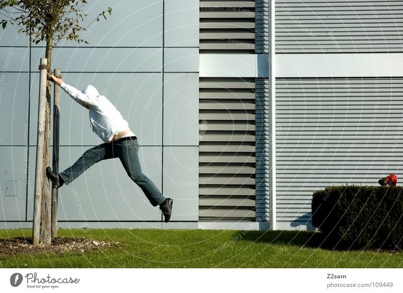 abhängen Mann Natur weiß grün Baum rot Sommer Erholung Architektur Gras Bewegung Garten Stil Beine 2 Linie