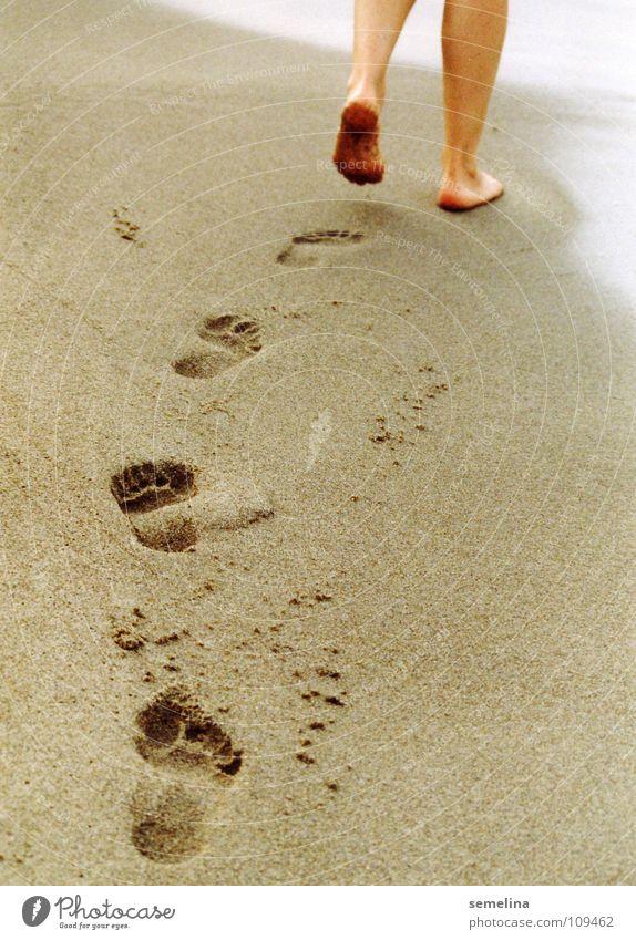 Strandläufer Meer Einsamkeit Fuß Wege & Pfade Sand Küste gehen laufen Spaziergang Spuren Fußspur Strandspaziergang