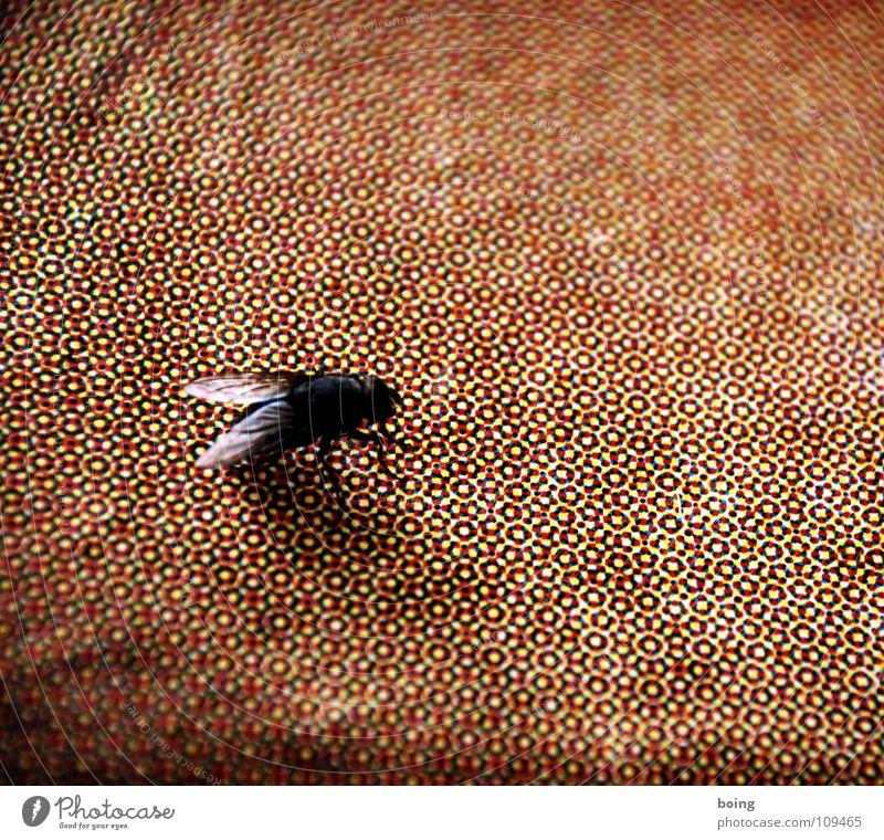 Fliegenschissprinting Farbe Haut Papier Punkt Wissenschaften Medien Zeitschrift Plakat Raster Lupe Handzettel Walze Mosaik Druckerzeugnisse Druckerei