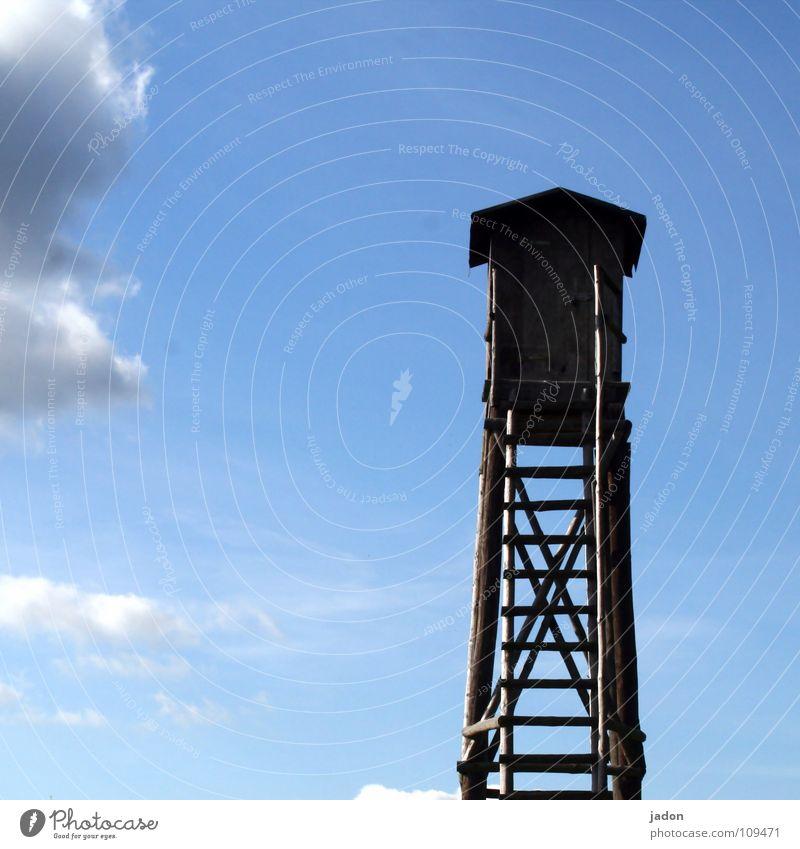 Himmelsleiter Wolken Hochsitz weiß Horizont aufsteigen Einsamkeit ruhig Karriere Quadrat Freizeit & Hobby Leiter Turm blau himmelwärts Klettern Jagd go aufwärts