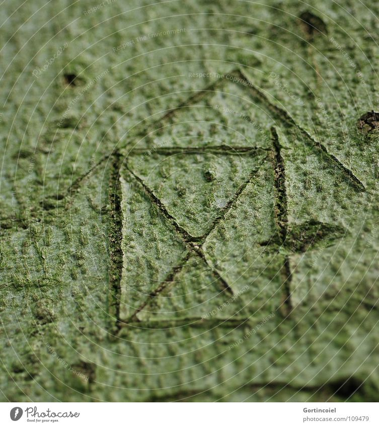 ...und nebendran vom Weihnachtsmann grün Baum Pflanze Haus Kunst Linie Haut Symbole & Metaphern Information Zeichen Lebewesen Hütte Furche Baumrinde Motivation