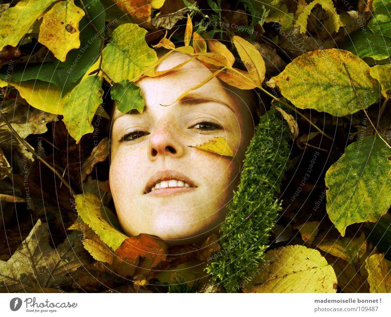 Verschollen Frau Mädchen grün Freude Gesicht Blatt gelb Wald kalt Herbst braun nass Ast feucht leicht bleich