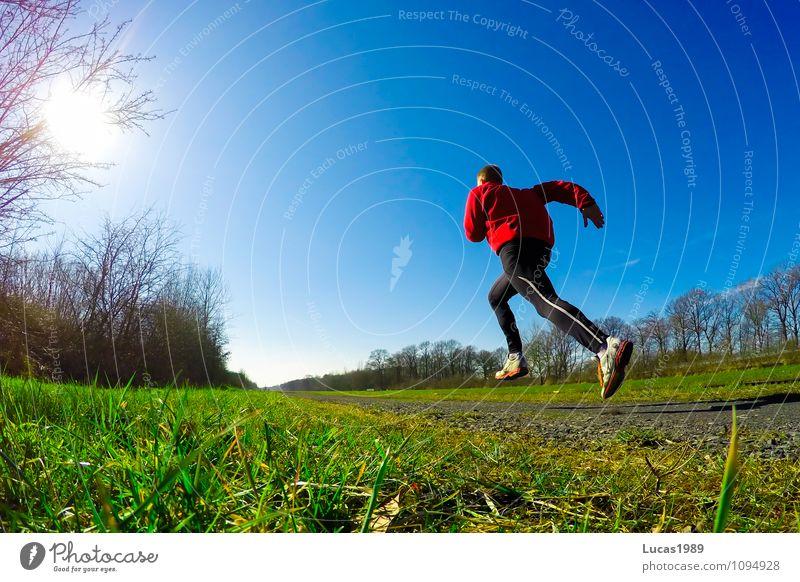 Sprint Mensch Natur Jugendliche Mann Sonne Junger Mann 18-30 Jahre Erwachsene Herbst Wiese Gras Frühling Sport springen Energiewirtschaft Kraft