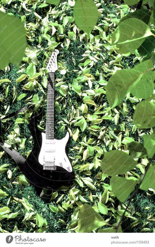 Ruhe vor dem Sturm grün ruhig Blatt Herbst Wiese Musik Konzert Rockmusik Gitarre Musikinstrument