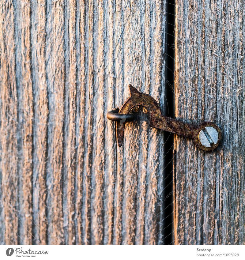 Geschlossen Riegel Schraube Holz Metall Rost hängen alt klein braun geheimnisvoll Neugier Schutz Verbote geschlossen Haken Öse Ösenschraube Autotür Farbfoto