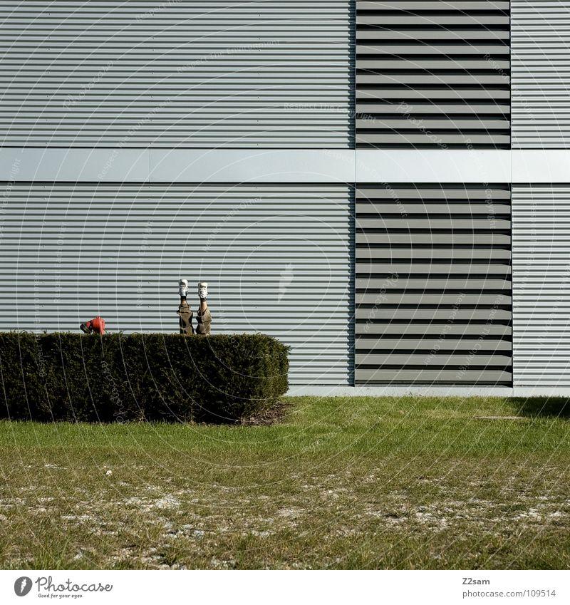 *Abtauchen* Mann Natur grün Sommer Wiese oben Architektur Gras Garten Stil Beine Fuß Linie Feste & Feiern Zufriedenheit Schuhe