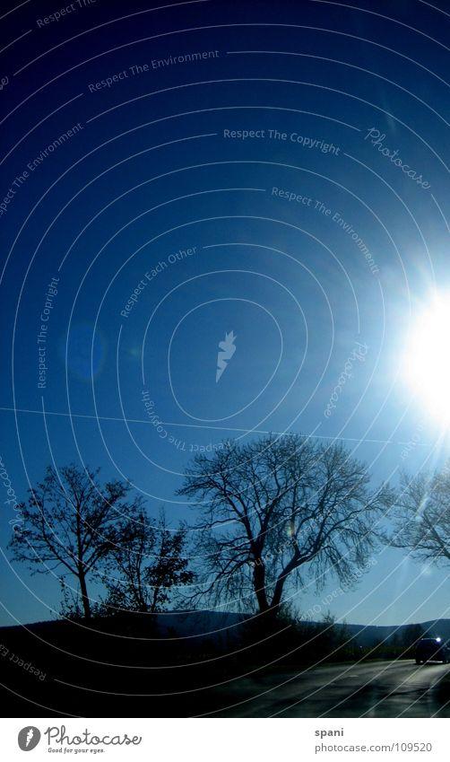 Horizontales Holz Himmel Sonne Einsamkeit Ferne Herbst Wiese Freiheit Landschaft Blauer Himmel Feuerball