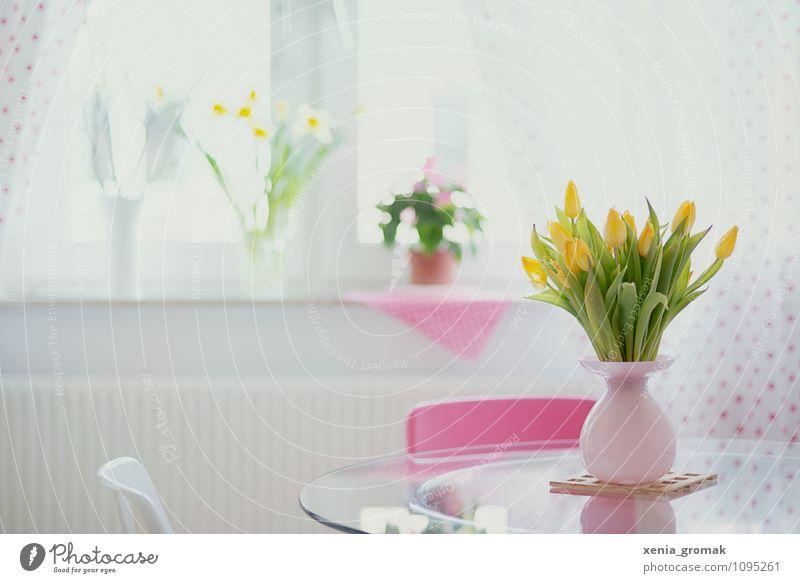 Tulpen grün Blume ruhig Fenster gelb Leben Frühling Glück rosa Lifestyle Wohnung Freizeit & Hobby Zufriedenheit Design Häusliches Leben ästhetisch