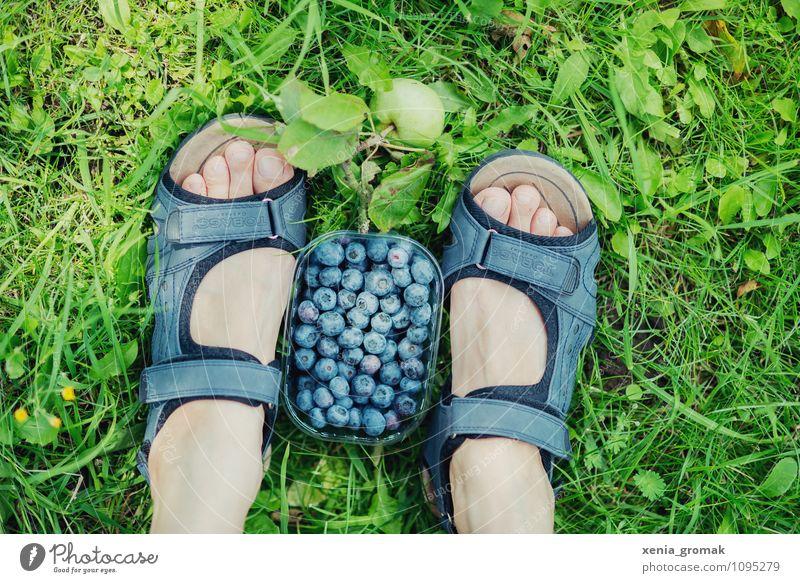 Picknick Ferien & Urlaub & Reisen Erholung ruhig Ferne Leben Gras Spielen Gesundheit Freiheit Lebensmittel Fuß Lifestyle Frucht Freizeit & Hobby Tourismus