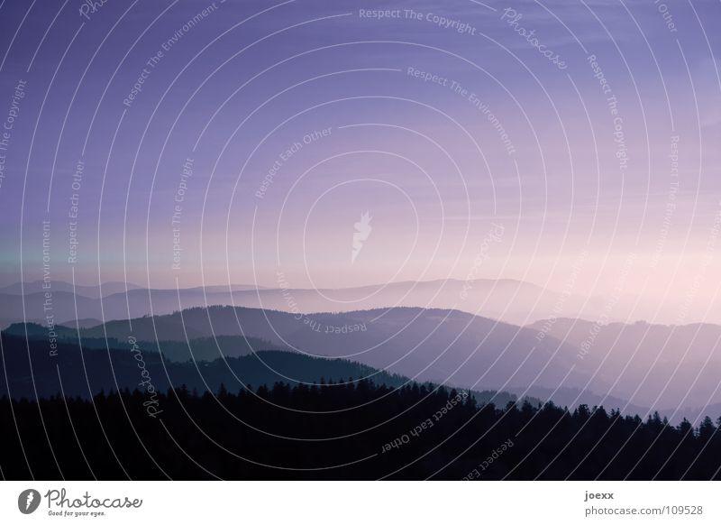In weiter Ferne, so nah Nebel Ferien & Urlaub & Reisen Sonnenuntergang Wald Schwarzwald Fernweh Aussicht Erholung Berge u. Gebirge Himmel Konzentration
