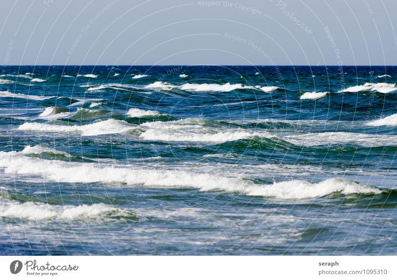 Brandung Wasser Wellen Strand Ostsee Natur Meer Küste maritim Schaum Hochwasser Wellenkamm Flutwelle Bewegung Hintergrundbild Strukturen & Formen Wellenlinie