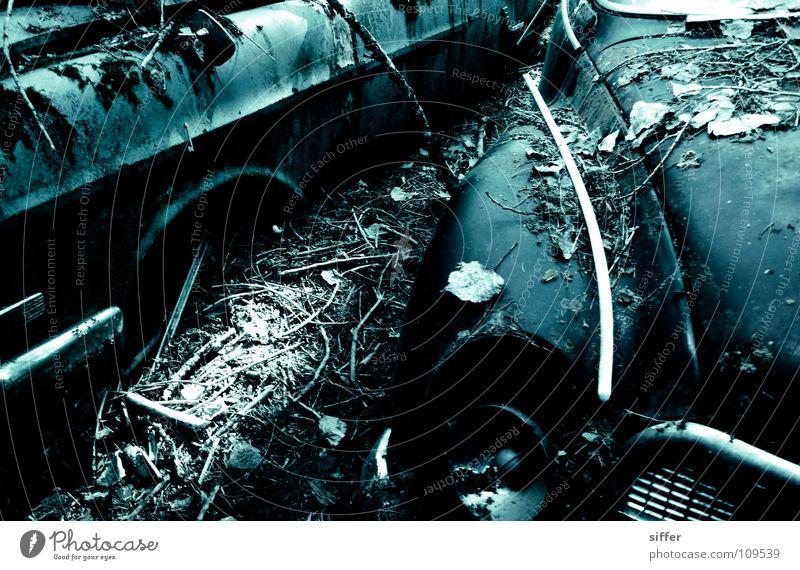 autofriedhof blau alt schön Blatt Einsamkeit schwarz Tod PKW kaputt Industrie Vergänglichkeit verfaulen verfallen Rost Erdöl Friedhof