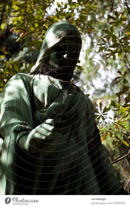 Kraft | durch Glaube Mensch Frau Jugendliche alt Sommer Junge Frau ruhig Erwachsene Leben feminin Religion & Glaube Garten Park Zufriedenheit stehen