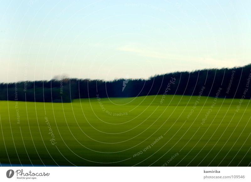 exposure Hintergrundbild Wiese Gras Wald Holzmehl Waldlichtung Feld grün Horizont horizontal Langzeitbelichtung fahren Geschwindigkeit Himmel Waldrand grell