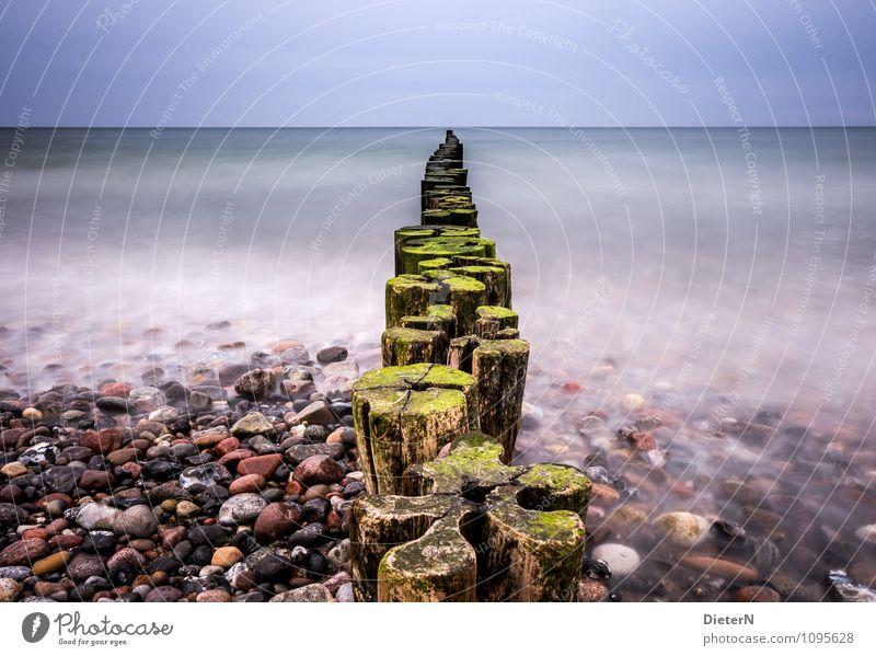 Kleeblatt Natur Landschaft Erde Luft Wasser Himmel Wolkenloser Himmel Wetter schlechtes Wetter Wind Küste Ostsee Meer blau grün schwarz weiß Buhne Horizont