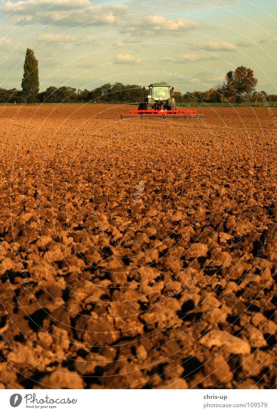 Traktor 2 Natur Himmel grün Wolken Arbeit & Erwerbstätigkeit PKW Landschaft braun Feld Erde Industrie KFZ Technik & Technologie Bauernhof Getreide Gemüse