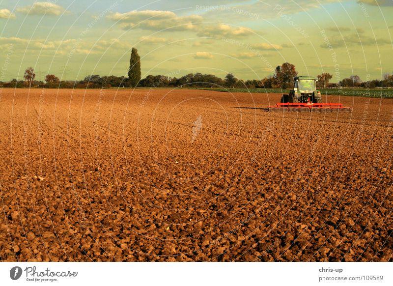Traktor 3 Natur Himmel grün Wolken Arbeit & Erwerbstätigkeit PKW Sand Landschaft braun Feld Erde KFZ Technik & Technologie Bauernhof Getreide Gemüse