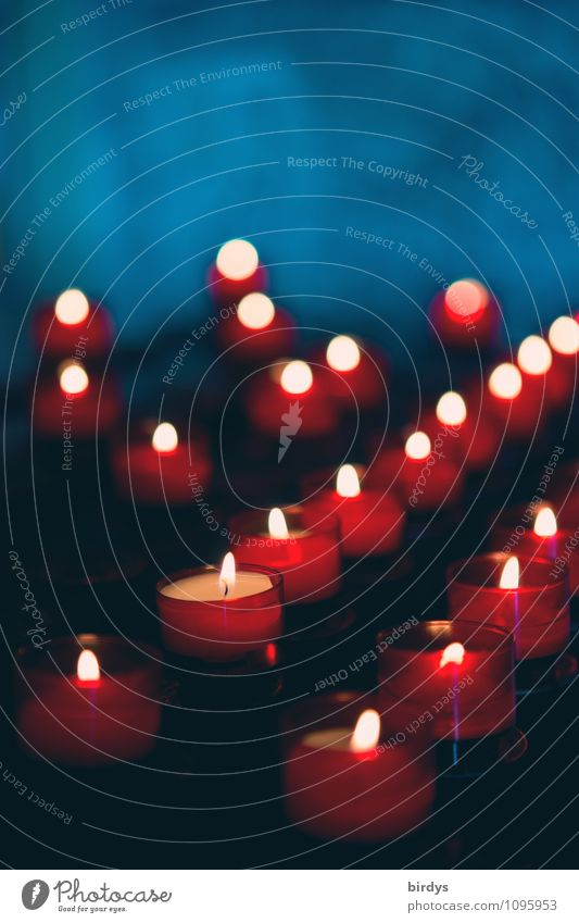 andächtig Kerze Kerzenaltar Kerzenschein Kerzenflamme leuchten ästhetisch weich blau rot Mitgefühl Menschlichkeit Solidarität trösten ruhig Hoffnung