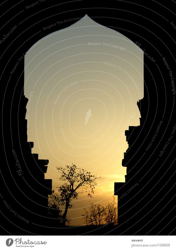 framed sunset Natur Ferien & Urlaub & Reisen Baum Sonne ruhig Ferne Traurigkeit träumen Romantik Frieden historisch Tor Indien Abenddämmerung Ruine Rahmen