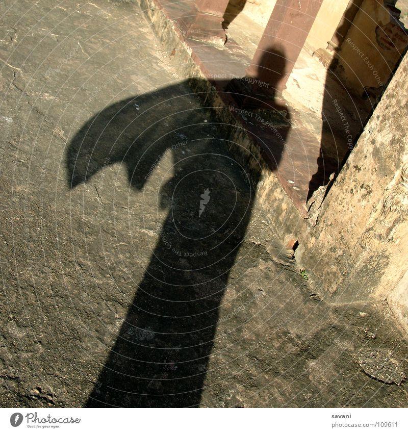 Schatten von Frau mit wehendem Tuch Freude Sonne Erwachsene Luft Wind Wärme Schal Stein braun gelb gold Physik Halstuch Indien eine Person im Wind wehen