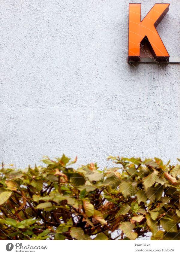 kaba Haus Wand Garten Fassade Buchstaben Werbung Zaun Hecke Leuchtreklame Kakao