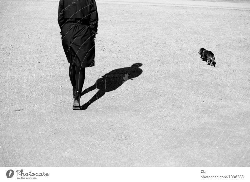 schlendern Mensch feminin Frau Erwachsene Leben 1 30-45 Jahre Schönes Wetter Fußgänger Wege & Pfade Tier Haustier Hund Dackel gehen Freundschaft Tierliebe Treue