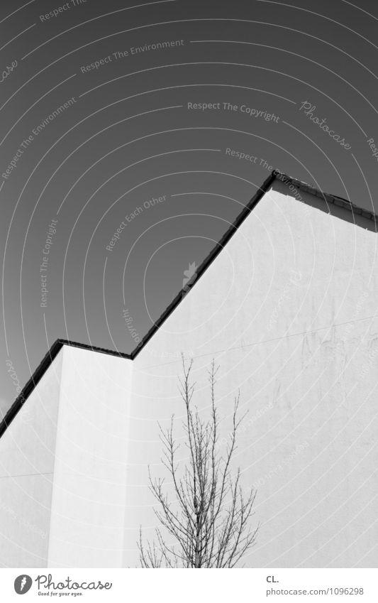 tendenz Wolkenloser Himmel Schönes Wetter Baum Haus Gebäude Architektur Mauer Wand ästhetisch Wachstum Häusliches Leben Ziel minimalistisch karg Schwarzweißfoto