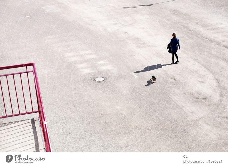sonntag Mensch feminin Frau Erwachsene Leben 1 30-45 Jahre Schönes Wetter Platz Treppe Treppengeländer Tier Hund gehen frei Freizeit & Hobby einzigartig Ferne