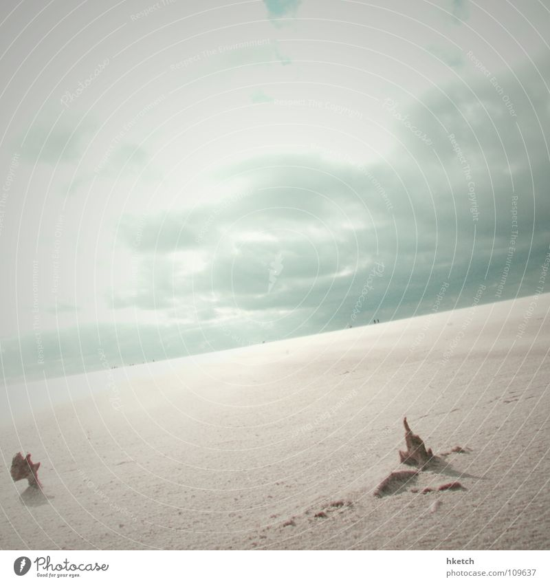 Endlos Unendlichkeit Ferne Horizont Wolken Strand verweht Sturm Sehnsucht Trauer Küste Himmel Vergänglichkeit offen Niveau Sand Wüste Wind Wasser wasserlos