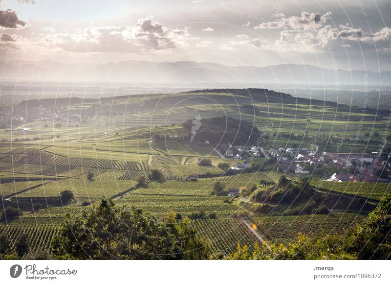 Jahrgang 2015 Himmel Natur Pflanze Sommer Landschaft Wolken Herbst Wiese Stimmung Horizont Idylle Ausflug Schönes Wetter Hügel Landwirtschaft Forstwirtschaft