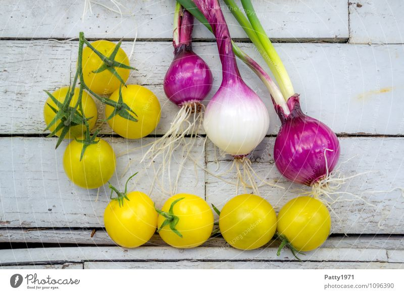 frisches Gemüse Lebensmittel Tomate Zwiebel Ernährung Bioprodukte Vegetarische Ernährung Gesundheit gelb genießen Farbfoto Tag