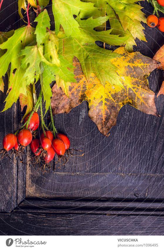 Bunte Herbstblätter auf dunklem Holz Natur alt Pflanze Baum rot Blatt Haus dunkel gelb Wand Innenarchitektur Stil Feste & Feiern Garten