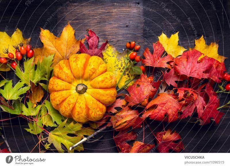 Kürbis auf bunte Herbst Blätter auf Holztisch Natur Pflanze Sommer dunkel Herbst Innenarchitektur Stil Feste & Feiern Garten Lebensmittel Design Dekoration & Verzierung Tisch Gemüse Herbstlaub Halloween