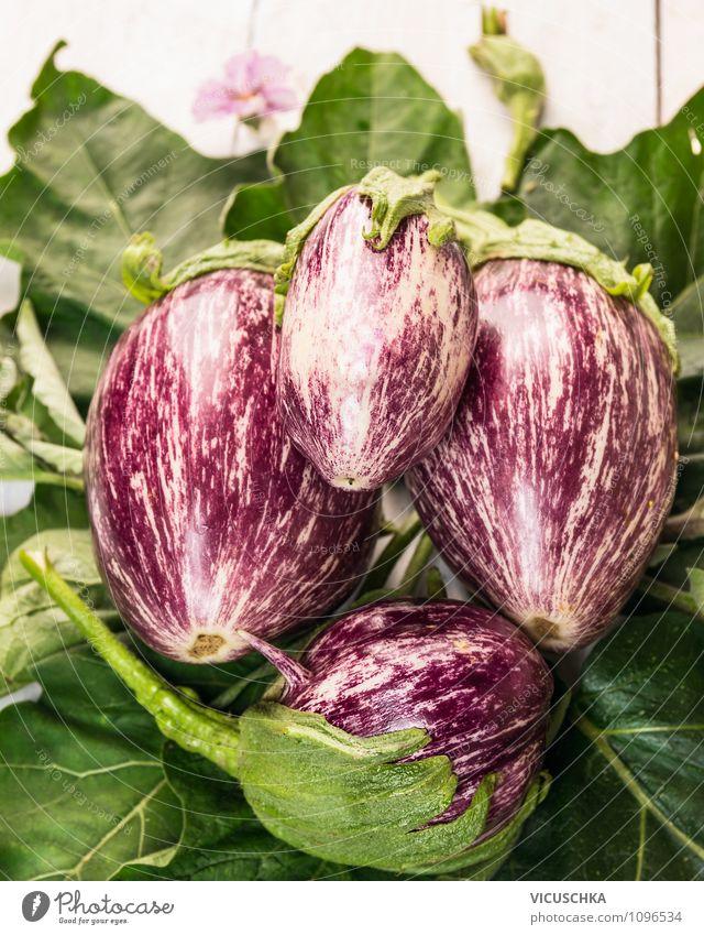 Gestreifte Auberginen auf grünen Blätter Lebensmittel Gemüse Ernährung Bioprodukte Vegetarische Ernährung Diät Stil Design Gesunde Ernährung Garten Natur Sommer