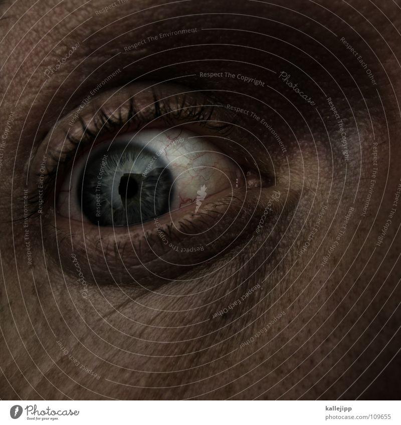 world in my eyes III Mensch Mann blau Auge Leben Gefühle Tod Haare & Frisuren Angst Haut nah Ende schreien Lebewesen Falte Flucht