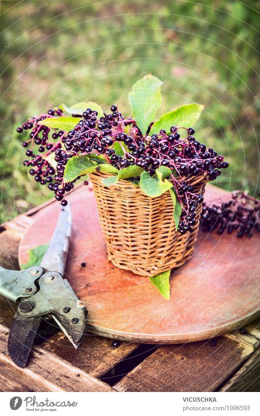 Holunder auf dem Gartentisch Natur Sommer Gesunde Ernährung gelb Leben Stil Holz Garten Lebensmittel Lifestyle Frucht Design Ernährung Tisch Ernte Bioprodukte