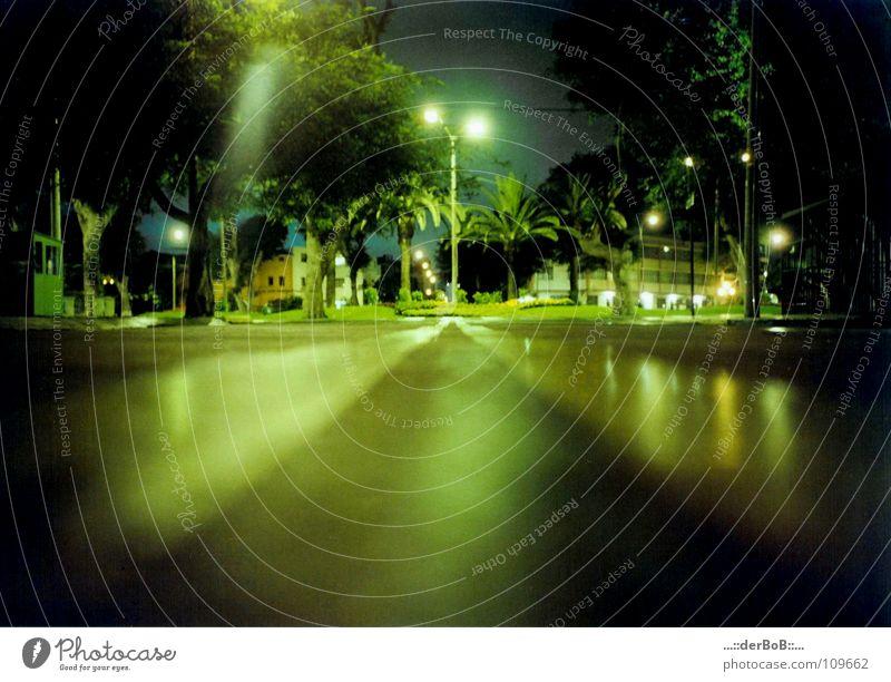 Nachtruhe Ferien & Urlaub & Reisen Stadt grün Baum ruhig Haus schwarz Straße Beleuchtung Park Sauberkeit Sicherheit Laterne Verkehrswege Peru Reichtum