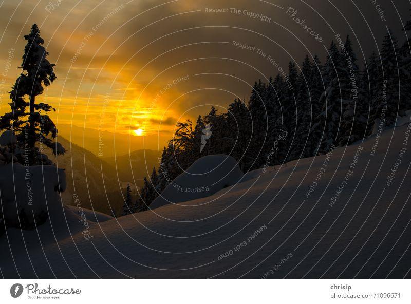 Abendstimmung Himmel Natur blau weiß Sonne Baum Erholung Einsamkeit Landschaft Wolken Winter Wald Umwelt gelb Traurigkeit Gefühle