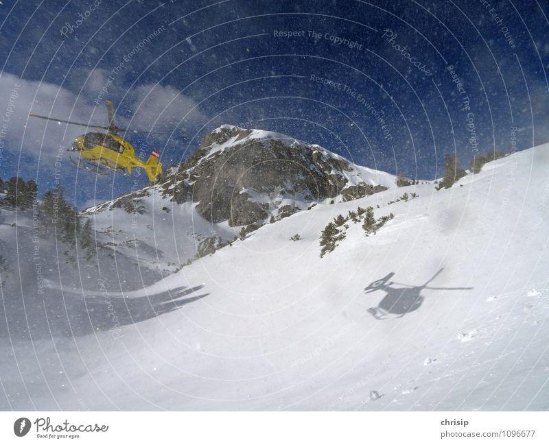 Heli in AKTION Umwelt Natur Landschaft Winter Schönes Wetter Wind Schnee Schneefall Baum Berge u. Gebirge Schneebedeckte Gipfel Verkehrsmittel Luftverkehr