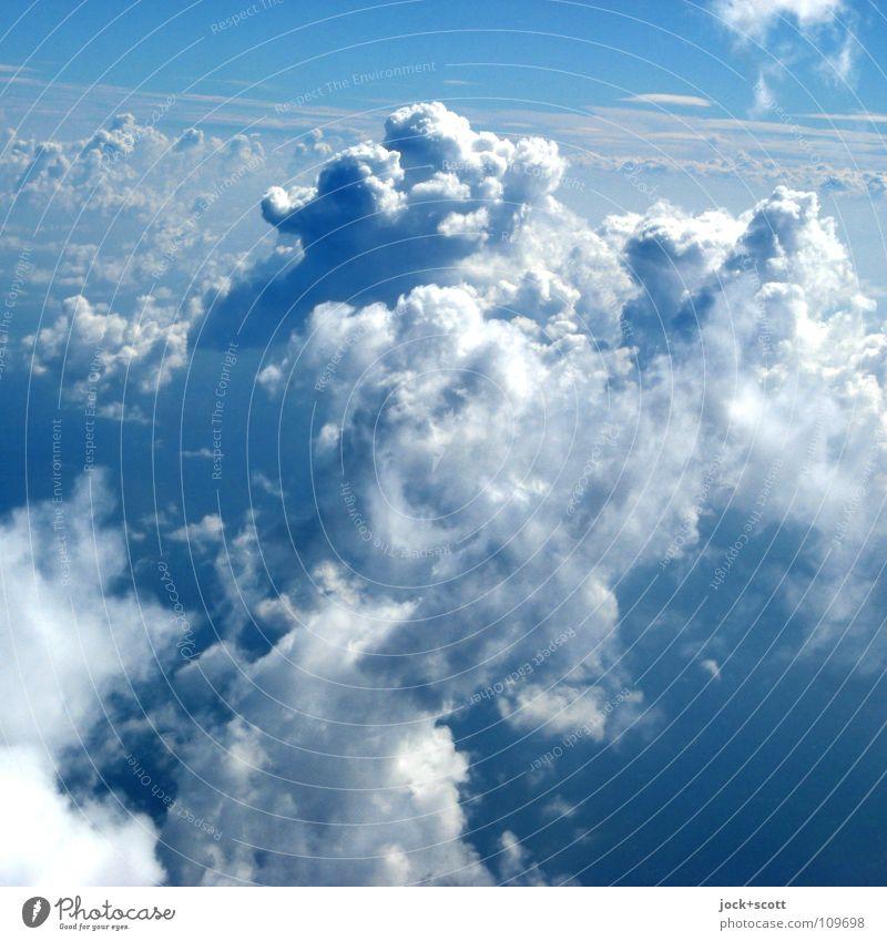Aerosol Luft Wolken Sommer Klima Schönes Wetter fliegen frei Unendlichkeit kuschlig oben schön blau Stimmung Geborgenheit authentisch Hoffnung Fernweh Freiheit