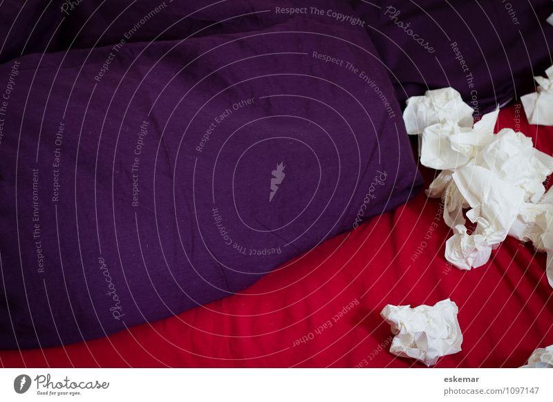 verschnupft Gesundheit Bett Erkältung Krankheit Schlafzimmer Kissen gebraucht Taschentuch