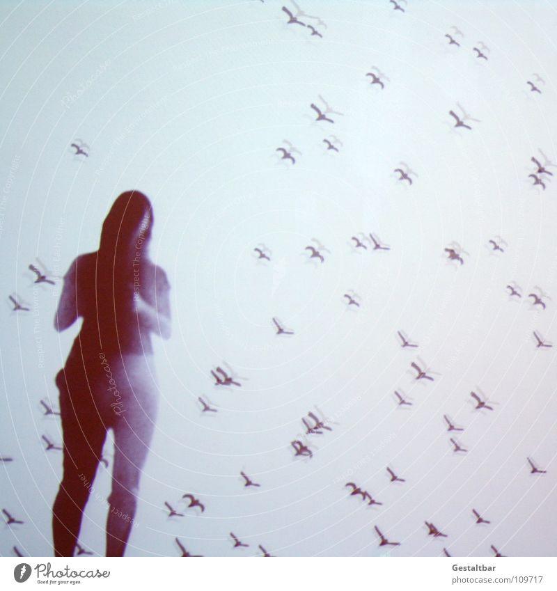 Schattenspiel 11 Frau ruhig Einsamkeit feminin Freiheit Haare & Frisuren Bewegung Denken Vogel fliegen frei Perspektive geheimnisvoll Aussicht Tasche